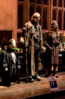 Harry Potter Studio Tour London 14.01.2015-11