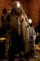 Harry Potter Studio Tour London 14.01.2015-14