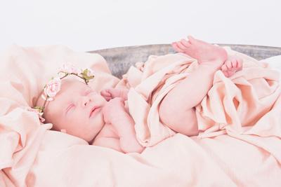 Charlotte Moran - Newborn-24